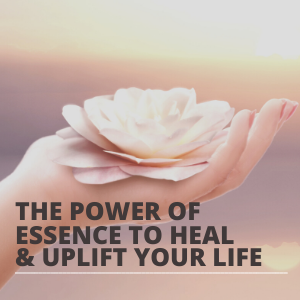 The Power of Presence to Heal AND Uplift Your Life SQUARE