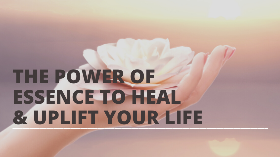 The Power of Presence to Heal AND Uplift Your Life