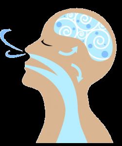 breathing-icon